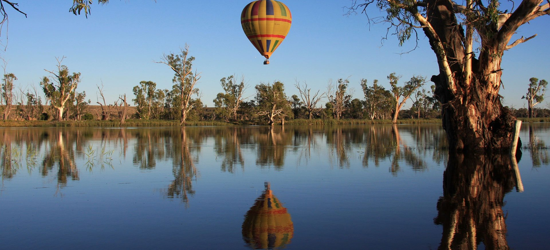 stunning day for a Balloon Adventures flight over Murray River