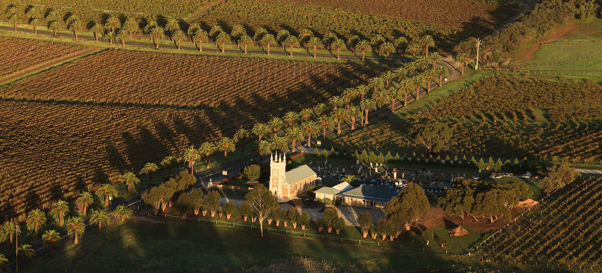 Hot air balloon flight over the Barossa Valley