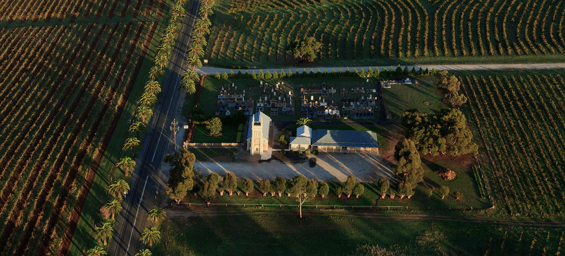 Hot air ballooning over the Barossa Valley