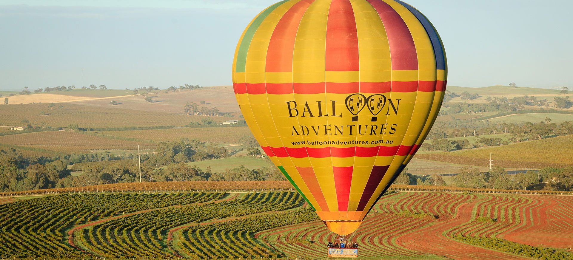Balloon Adventures - close up of hot air balloon over the Barossa Valley