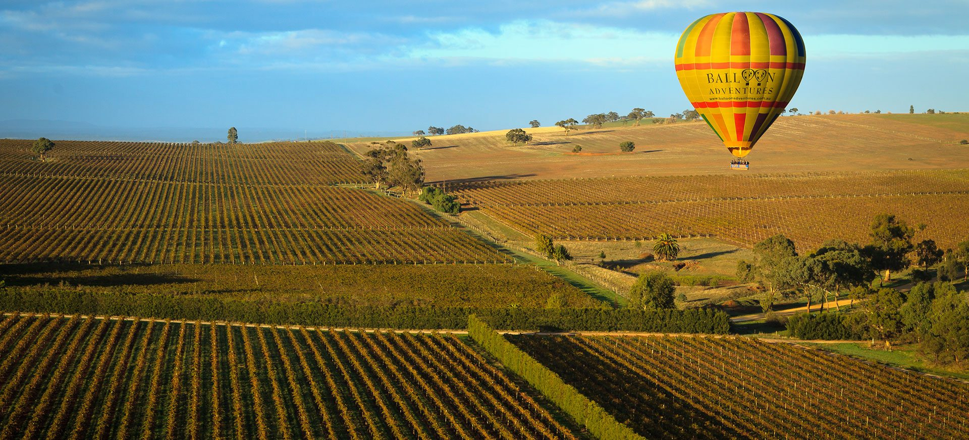 Balloon Adventures hot air balloon over the Barossa Valley