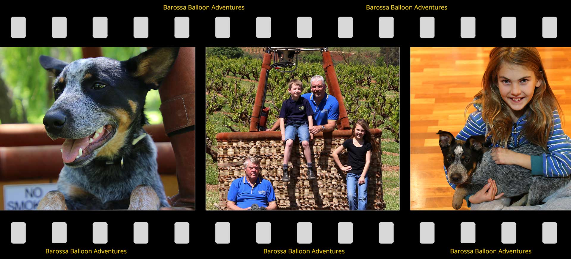 gibson family image strip post Balloon Adventures Barossa flight