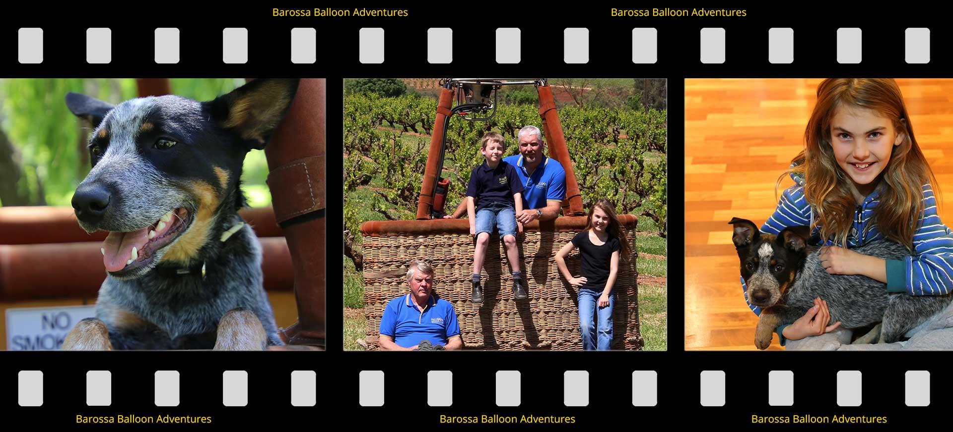 gibson family image strip post Balloon Adventures Barossa flight