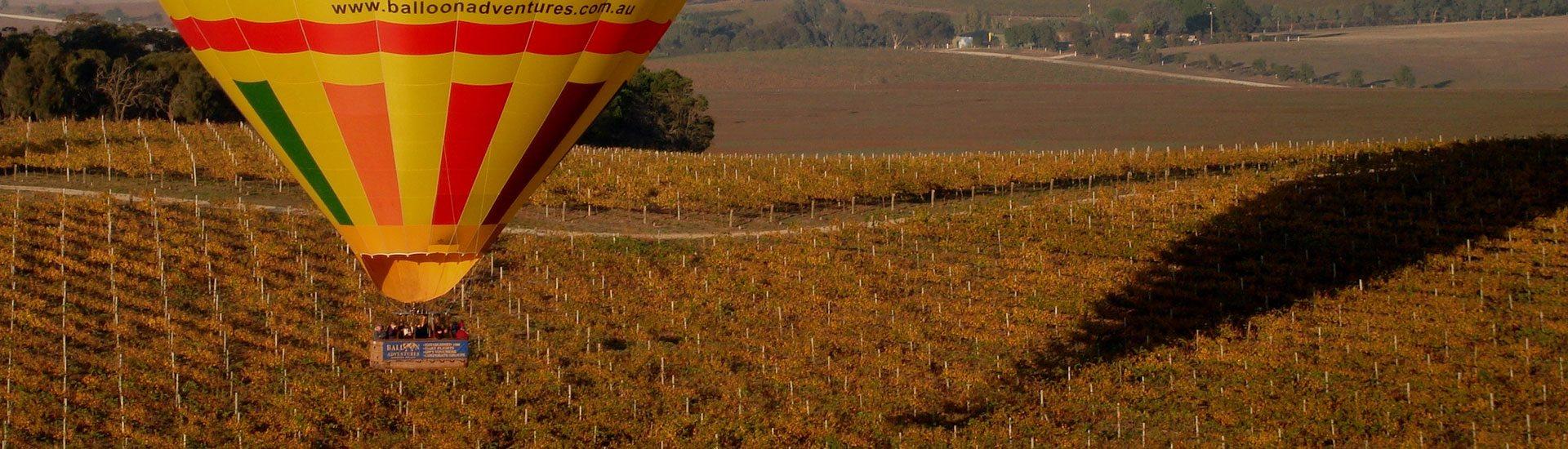 balloon-adventures-flights-over-the-barossa-balloon-ride-scenic-5