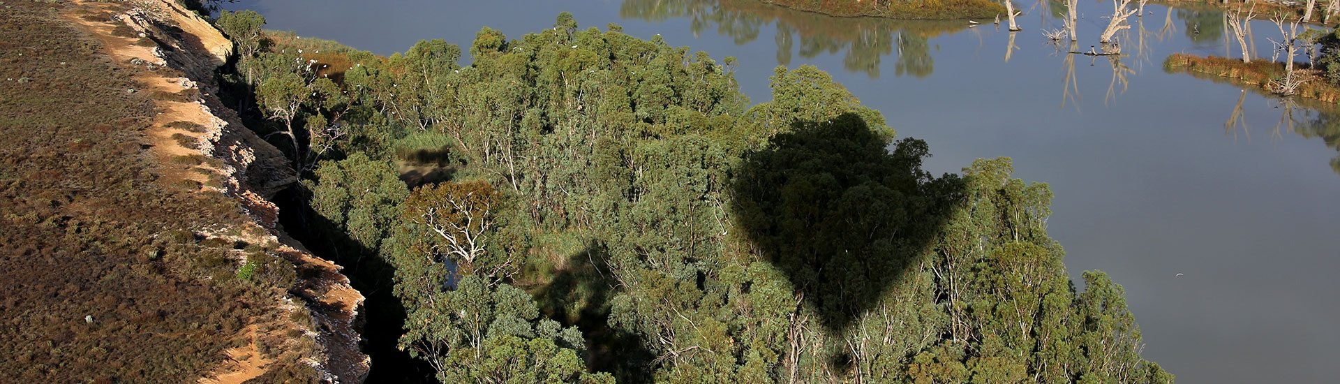 balloon-adventures-flights-over-the-murray-balloon-ride-scenic-4