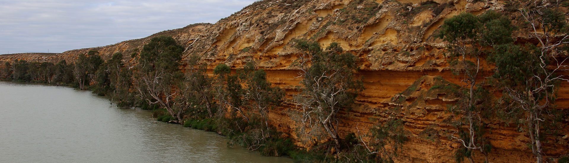Gorgeous shot of Murray River in South Australia.