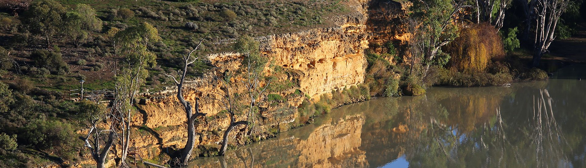 Murray River scenery from a Balloon Adventures hot air balloon.
